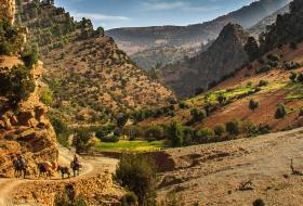 Atlas Mountains day trip