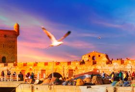 Marrakech to Essaouira day trip excursion