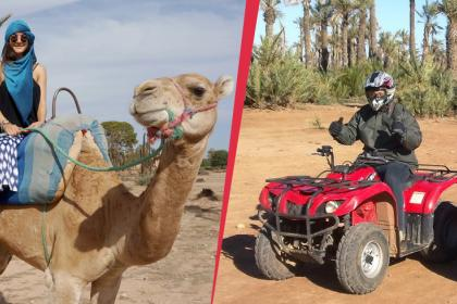 Marrakech camel ride and quad biking