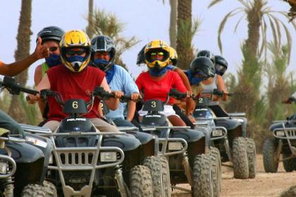 Camel ride and Quad bike in Marrakech palm grove desert