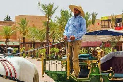 Marrakech horse carriage tour