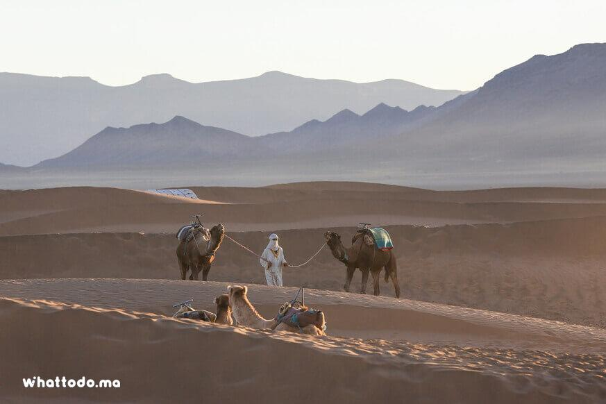Photo - 8 - Zagora desert tour