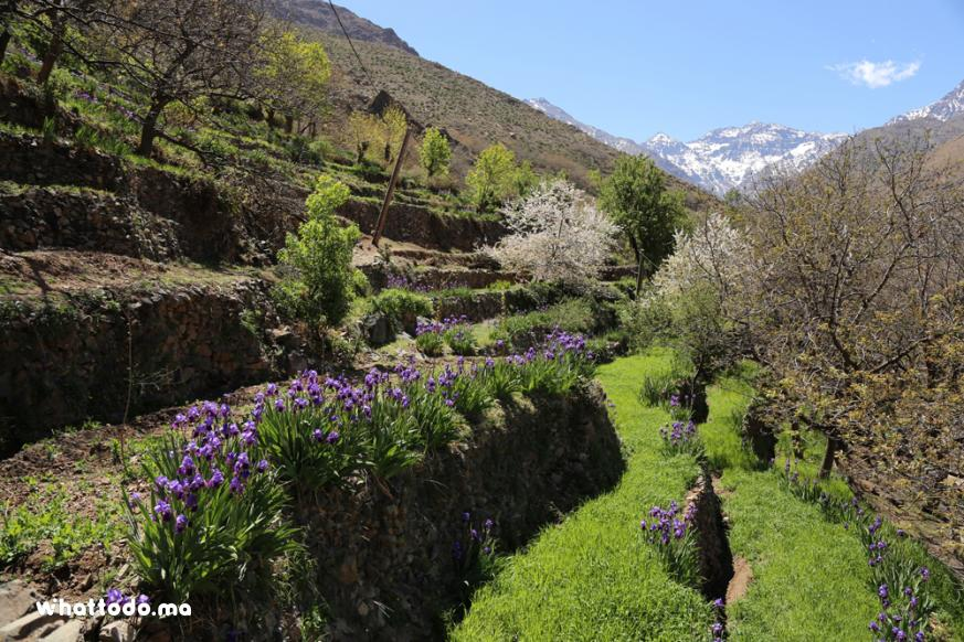 Photo - 5 - Atlas Mountains excursion: 4 valleys day trip from Marrakech
