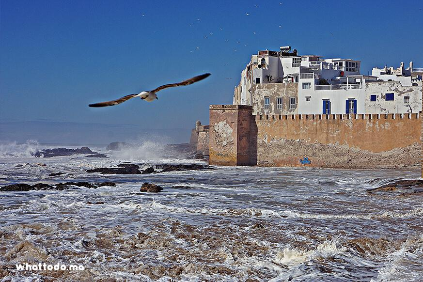 Photo - 1 - Day trip to Essaouira from Marrakech