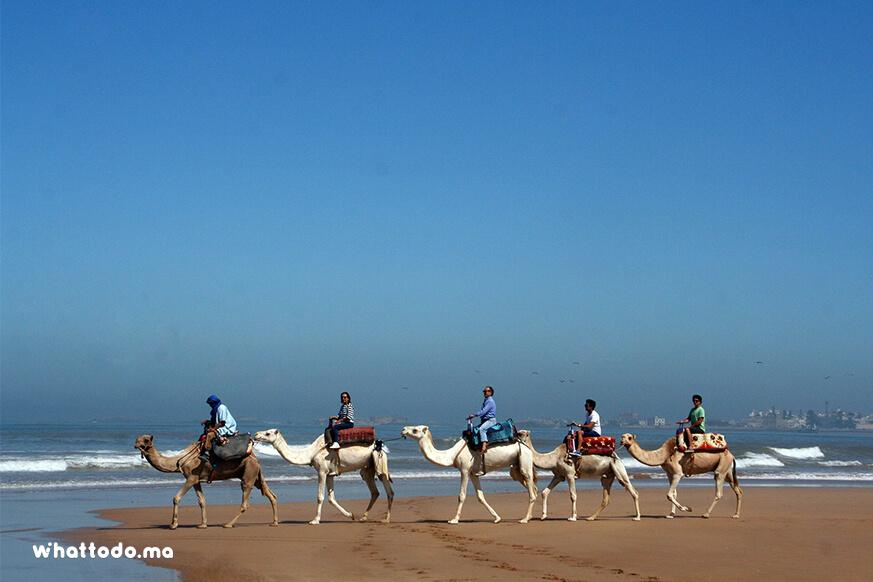 Photo - 10 - Day trip to Essaouira from Marrakech
