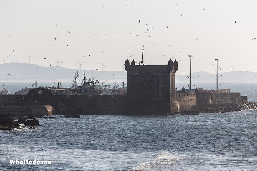 Photo - 7 - Day trip to Essaouira from Marrakech