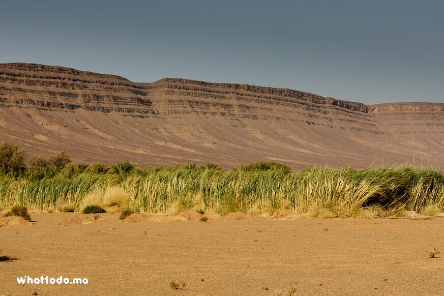 Photo - 5 - Zagora desert tour