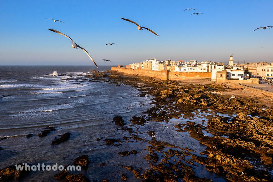 Photo - 9 - Day trip to Essaouira from Marrakech