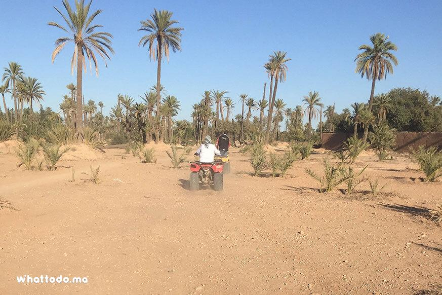 Photo - 11 - Balade en quad à la Palmeraie de Marrakech
