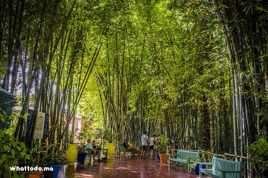 Photo - 1 - Musées Marrakech: Majorelle, Yves Saint Laurent et la Palmeraie