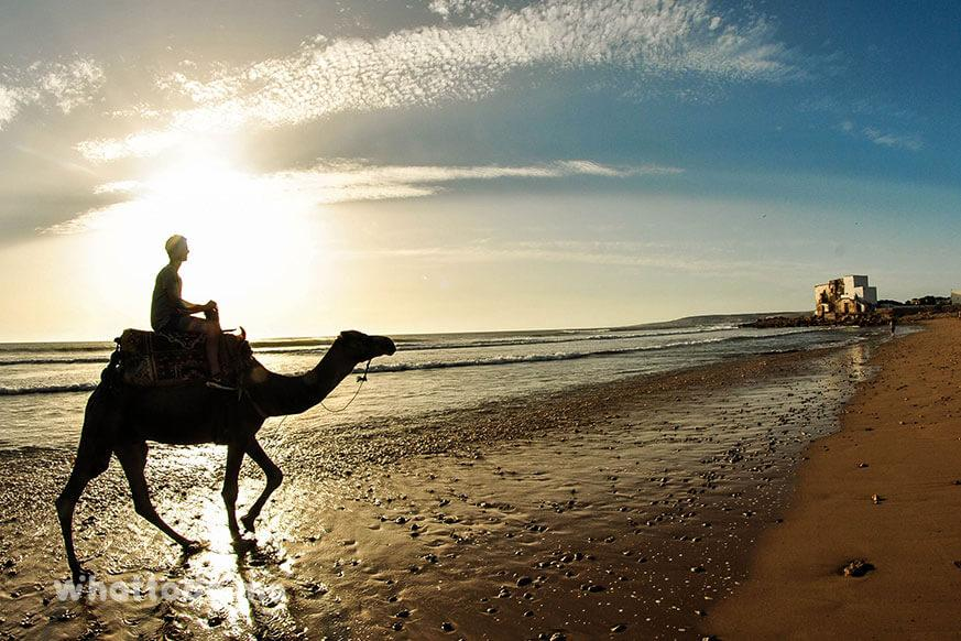 Photo - 15 days surf lessons and Yoga retreat in Agadir