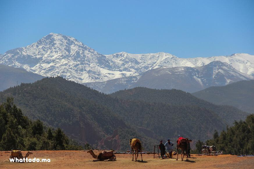 Photo - 1 - Atlas Mountains excursion: 4 valleys day trip from Marrakech