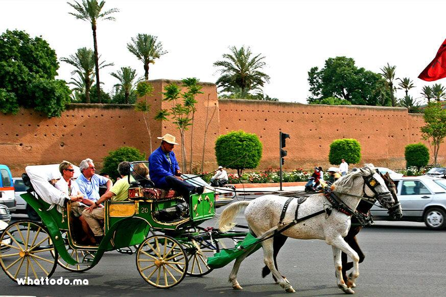 Photo - 4 - Marrakech gardens by horse carriage