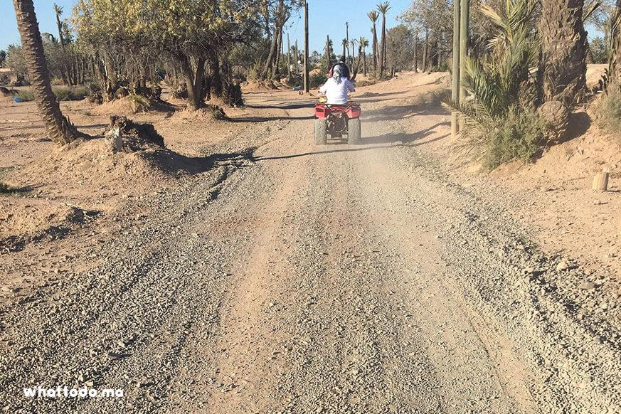Photo - 9 - Quad bike tour in Marrakech palm grove