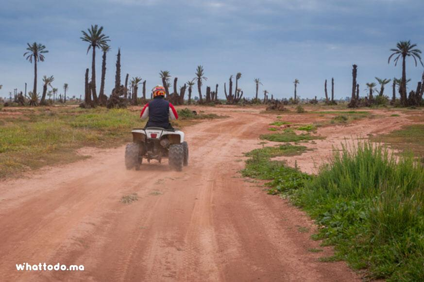 Photo - 2 - Quad bike tour in Marrakech palm grove