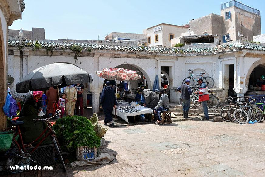 Photo - 10 - Essaouira Full-Day Tour From Marrakech