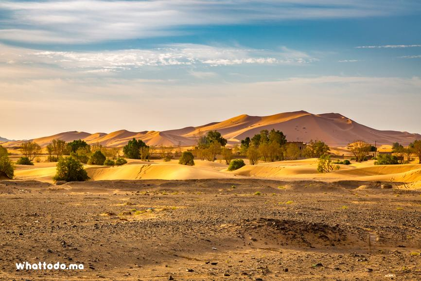 Photo - 7Private trip to Merzouga desert from Marrakech to Fes