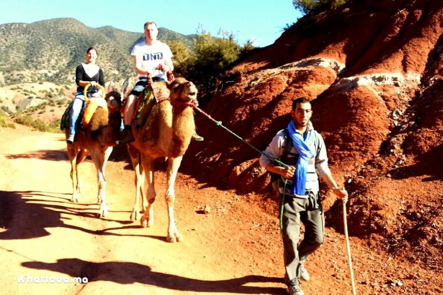 Photo - 1 - Atlas mountains excursion from Marrakech: Multi activities tour