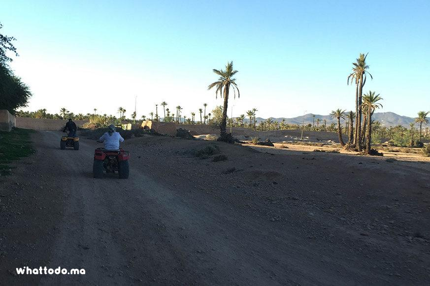 Photo - 7 - Quad bike tour in Marrakech palm grove
