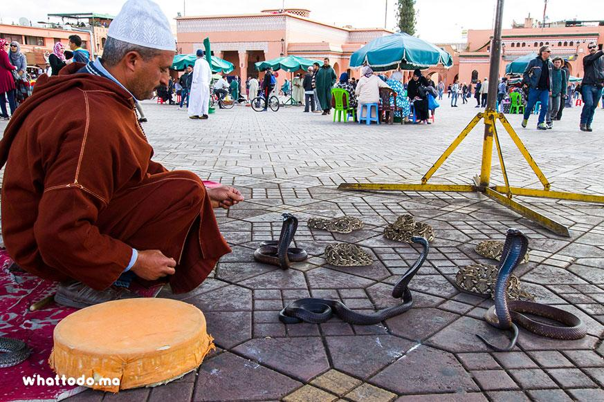 Photo - 1 - Marrakech Souks and Medina tour
