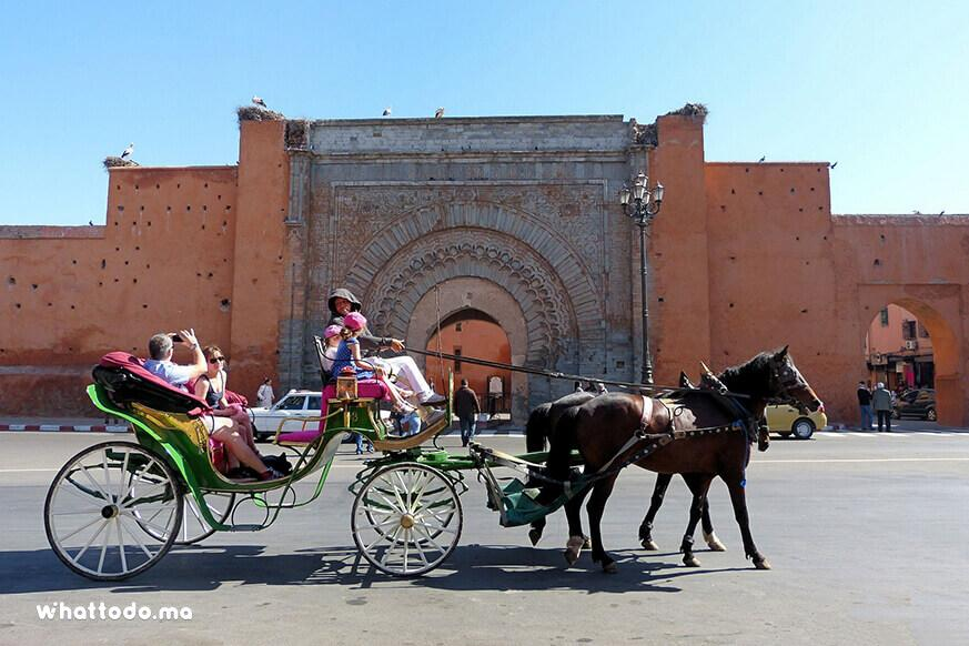 Photo - 2 - Marrakech gardens by horse carriage